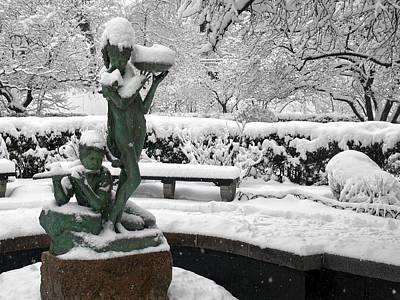 Photograph - Winter In The Secret Garden by Cornelis Verwaal