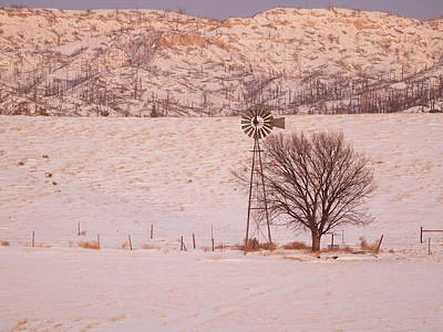 Photograph - Winter In The Setting Sunlight  by HW Kateley
