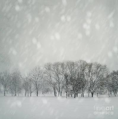 Pyrography - Winter by Jelena Jovanovic
