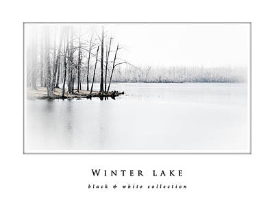 Photograph - Winter Lake  Black And White Collection by Greg Jackson
