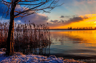 Winter Lake Sunset With A Tree Lighted In Red And Orange  Art Print