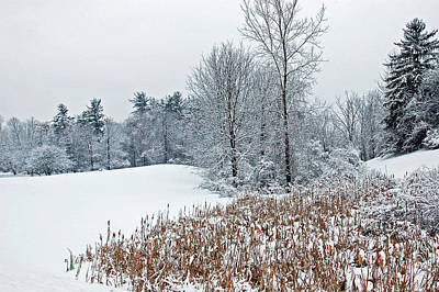 Photograph - Winter Landscape by Aimee L Maher ALM GALLERY
