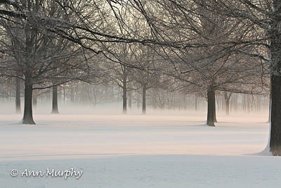 Photograph - Winter Landscape by Ann Murphy
