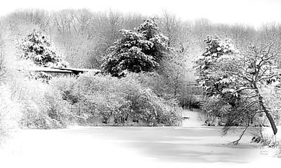 Bare Trees Digital Art - Winter Landscape Black And White by Julie Palencia