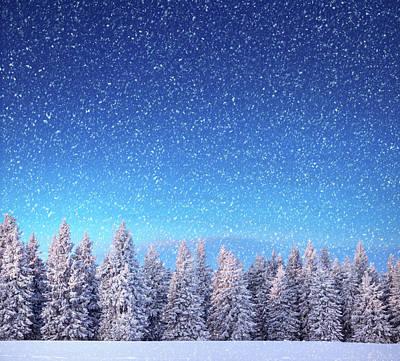 Photograph - Winter Landscape by Borchee