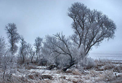 Photograph - Winter Landscape by Don Durfee
