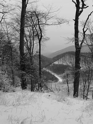 Photograph - Winter Landscape by Eva Csilla Horvath