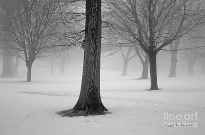 Photograph - Winter Landscape II by Dave Gordon