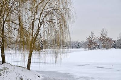Winter Landscape Art Print by Julie Palencia