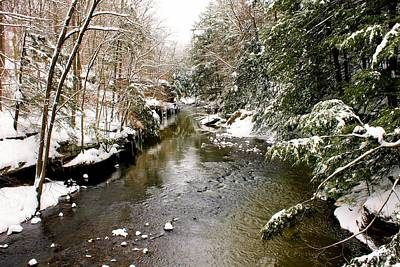 Photograph - Winter Landscape by Michelle Joseph-Long