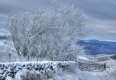 Photograph - Winter Landscape Near Buxton by David Birchall