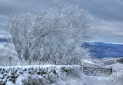 Winter Landscape Near Buxton Art Print by David Birchall