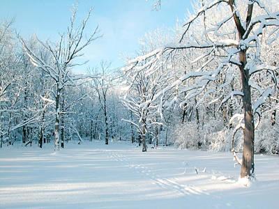 Winter Scene Photograph - Winter Landscape Ottawa by Rob Huntley