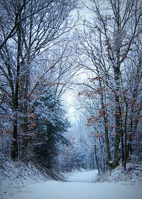 Gravel Road Photograph - Winter Lane by Cricket Hackmann