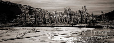 Art Print featuring the photograph Winter Light by J L Woody Wooden