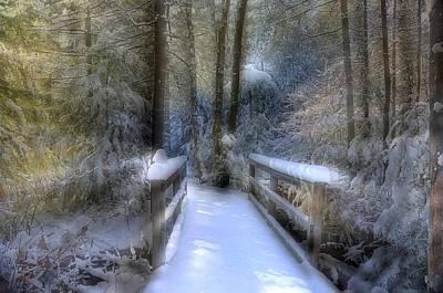Winter Light On Bridge Art Print