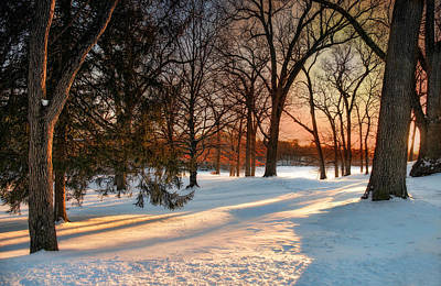 Photograph - Winter Light by Robin-Lee Vieira