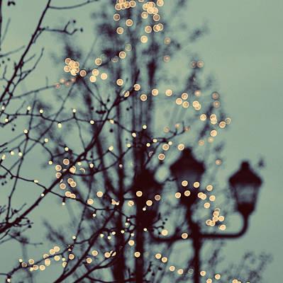 Winter Lights Art Print by Elle Moss