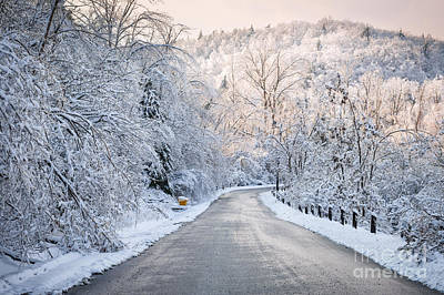 Downhill Photograph - Winter Magic by Elena Elisseeva
