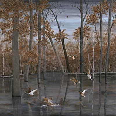 Wood Duck Painting - Winter Mallards by Sara Davenport
