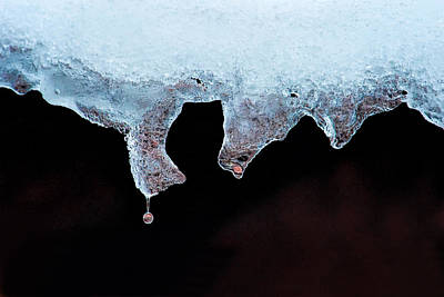 Photograph - Winter Melting by Joan Herwig