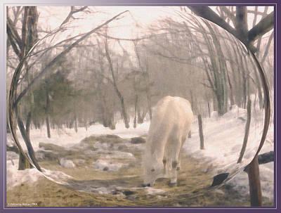 Winter Moments- With My Paso Fino Stallion Original