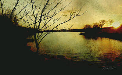 Winter Moody Sunset  Art Print by Ann Powell