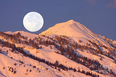Photograph - Winter Moon by Bill Singleton