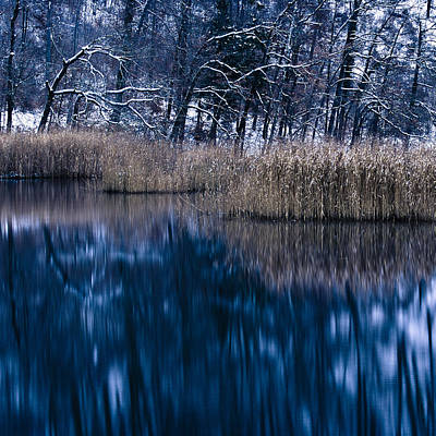 Photograph - Winter Morning II by Alexander Kunz