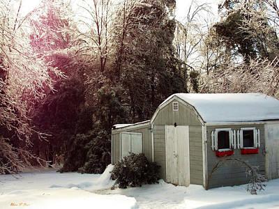 Photograph - Winter Morning by Shana Rowe Jackson