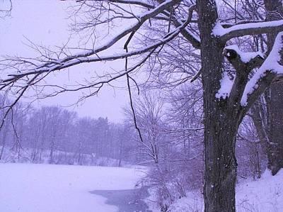 Photograph - Winter Morning by Teresa Banks