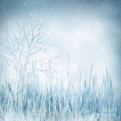 Mythja Digital Art - Winter by Mythja  Photography