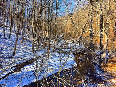 Photograph - Winter Nature Walk by Chris Montcalmo