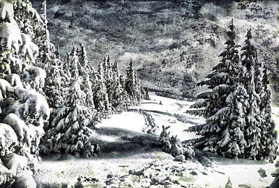Excellent Christmas Gifts Digital Art - Winter Night Forest 7 by Yury Malkov