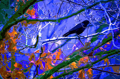 Winter Night Roost Print by Brian Stevens