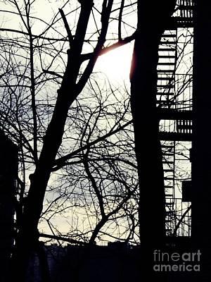 Winter On Overlook Terrace Print by Sarah Loft