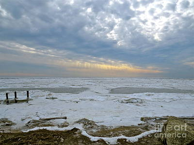 Photograph - Winter On The Delaware Bay  by Nancy Patterson
