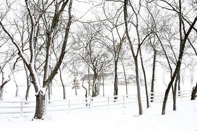 Photograph - Winter On The Farm by Crystal Nederman