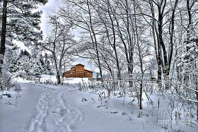 Photograph - Winter On The Farm by Life With Horses