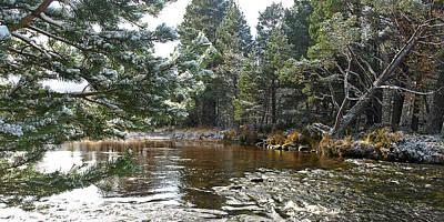 Winter On The Loch Near Aviemore Art Print