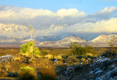 Winter In The Organ Mountains Art Print