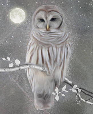 Art Print featuring the digital art Winter Owl by Nina Bradica