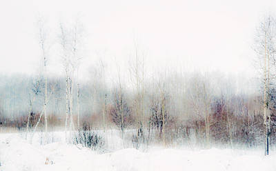 Winter Painting II. Aquarel By Nature Art Print by Jenny Rainbow