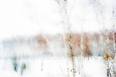 Winter Painting IIi. Aquarel By Nature Art Print by Jenny Rainbow