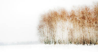 Winter Painting Iv. Aquarel By Nature Art Print by Jenny Rainbow