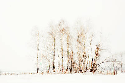 Winter Painting Vi. Aquarel By Nature Print by Jenny Rainbow