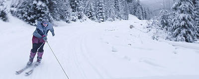 Photograph - Winter Panorama With Skier  by Vlad Baciu