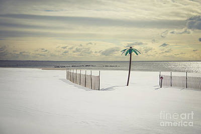 Coney Island Photograph - Winter Paradise by Evelina Kremsdorf