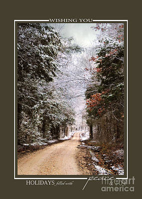 Photograph - Winter Paradise Scenic Landscape Christmas Cards by Jai Johnson