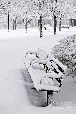 Park Benches Photograph - Winter Park With Benches by Elena Elisseeva